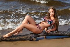 Fille chaude sur la plage photographie stock