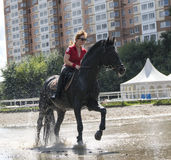 Fille conduisant un cheval Images libres de droits