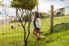 Fille curieuse observant les moutons dans la campagne Image libre de droits
