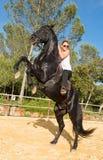 Fille d'équitation sur l'étalon Images libres de droits