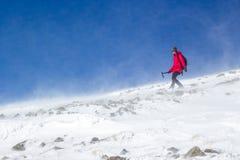 Fille d'alpiniste trimardant dans un mountaind neigé avec le vent dur Photographie stock libre de droits