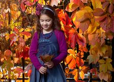 Fille d'automne Images stock