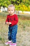 Fille d'enfant en bas âge d'automne Photos libres de droits