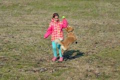Fille d'enfant en bas âge jouant avec son chien Image libre de droits