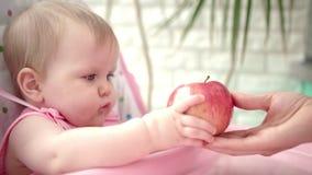 Fille d'enfant en bas âge mangeant du fruit Petit enfant mangeant la pomme rouge banque de vidéos