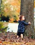 Fille d'enfant en bas âge étreignant un arbre dehors en automne Photos libres de droits