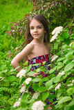 Fille d'une chevelure en parc de ressort Photo stock