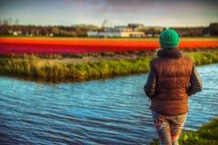 Fille dans des domaines de tulipe Image libre de droits