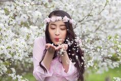 Fille dans des pétales blancs de soufflement roses de cerise d'ao Dai de ses paumes Images libres de droits