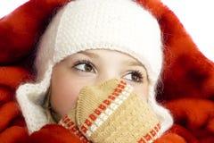 Fille dans des vêtements de l'hiver Photos stock