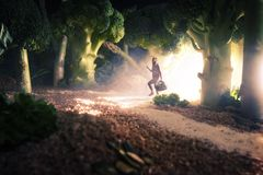 Fille dans la forêt de nourriture Image libre de droits