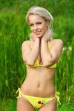 Fille dans le bikini Photos stock
