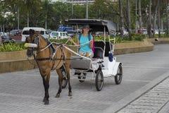 Fille dans le chapeau sur l'entraîneur avec le cheval brun Attraction touristique sur la rue Car de vintage avec le cheval Images stock
