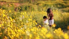 Fille dans le domaine de fleur Images libres de droits