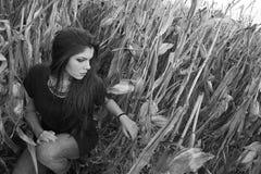 Fille dans le domaine de maïs Photos libres de droits