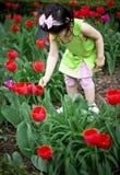 Fille dans le domaine de tulipe photo libre de droits