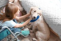 Fille dans le fauteuil roulant avec le chien de service Photos stock