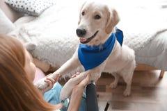 Fille dans le fauteuil roulant avec le chien de service Photo libre de droits