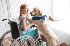 Fille dans le fauteuil roulant avec le chien de service Image stock