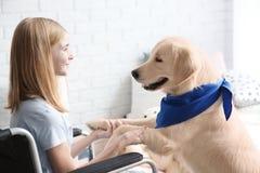Fille dans le fauteuil roulant avec le chien de service Photographie stock libre de droits