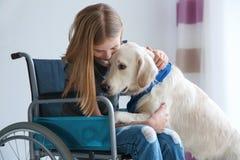 Fille dans le fauteuil roulant avec le chien de service Photo stock