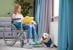 Fille dans le livre de lecture de fauteuil roulant avec le chien de service Images stock
