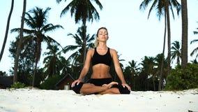 Fille dans le yoga de lotus pendant le matin dans des paumes à l'aube banque de vidéos