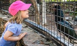 Fille dans le zoo photographie stock libre de droits