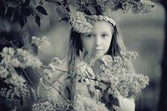 Fille dans les branches du lilas Image stock