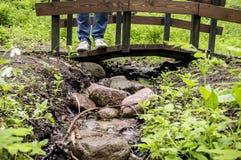 Fille dans les espadrilles blanches et des jeans se tenant sur un pont en bois, qui est conduit par un petit courant de forêt Photos stock