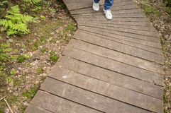 Fille dans les espadrilles et des jeans marchant le long du chemin en bois écologique Photo stock