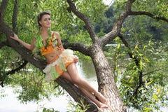 Fille dans un arbre Photographie stock