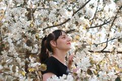 Fille dans un arbre de fleur de jour ensoleillé d'été Image stock