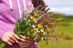 Fille dans un domaine avec un groupe de fleurs sauvages dans leurs mains Le concept de la pureté et unité avec la nature Images libres de droits