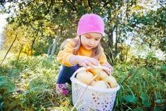 Fille dans un jardin Photos libres de droits