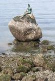 Fille dans une statue de Wetsuit image libre de droits
