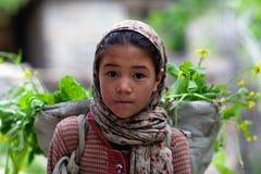 Fille de Balti, Inde Images libres de droits
