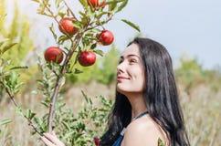 Fille de brune dans un jardin sauvage près d'une branche d'une pomme TR images libres de droits