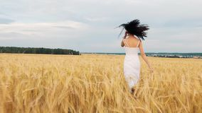 Fille de brune de beauté avec de longs cheveux sains tournant et riant extérieur sur le champ de blé d'or Apprécier la nature jeu clips vidéos
