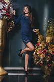 Fille de brune posant dans la robe bleue avec la dentelle Photo stock