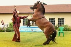 Fille de cowboy avec l'interprète de cheval Photographie stock libre de droits