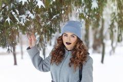 Fille de hippie en hiver Photos libres de droits
