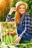 Fille de jeune exploitant agricole sur le champ de maïs image stock