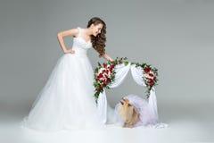 Fille de jeune mariée avec la jeune mariée de chien sous la voûte de fleur Image stock