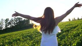 Fille de l'adolescence d'été courant sur le champ vert, soulevant des mains au coucher du soleil dehors Belle jeune femme heureus banque de vidéos
