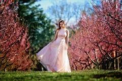 Fille de l'adolescence dans un domaine des fleurs de cerisier photos stock