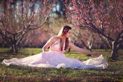 Fille de l'adolescence dans un domaine des fleurs de cerisier photo stock