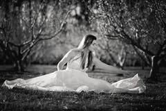 Fille de l'adolescence dans un domaine des fleurs de cerisier photographie stock libre de droits