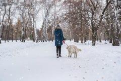 Fille de l'adolescence méconnaissable marchant son chien Photo libre de droits
