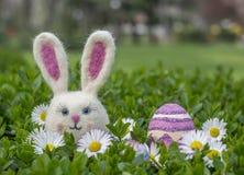 Fille de lapin de Pâques avec l'oeuf et les fleurs de pâques sur le buisson vert Photo stock